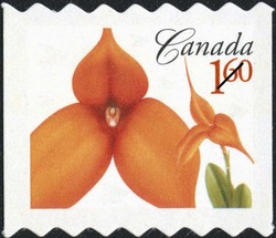 Masdevallia Kaleidoscope Conni Canada Postage Stamp | Flowers
