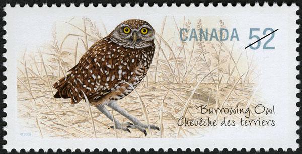 Burrowing Owl Canada Postage Stamp | Endangered Species