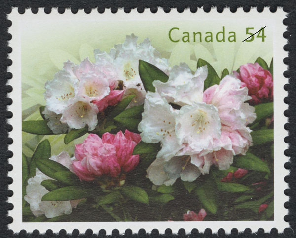 White Rhododendrons Canada Postage Stamp | Rhododendrons