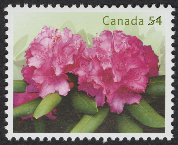 Pink Rhododendrons Canada Postage Stamp | Rhododendrons