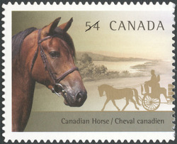Canadian Horse Canada Postage Stamp | The Canadian Horse and the Newfoundland Pony