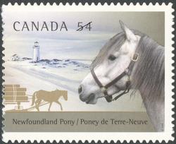 Newfoundland Pony Canada Postage Stamp   The Canadian Horse and the Newfoundland Pony
