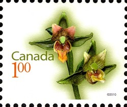 Giant Helleborine Canada Postage Stamp | Flowers