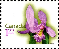 Grass Pink Canada Postage Stamp | Flowers
