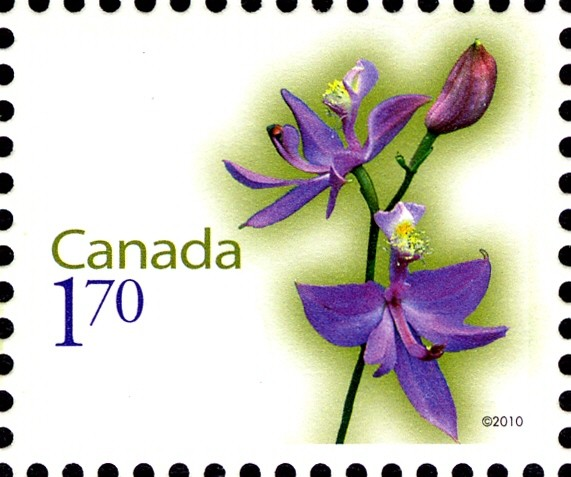Rose Pogonia Canada Postage Stamp