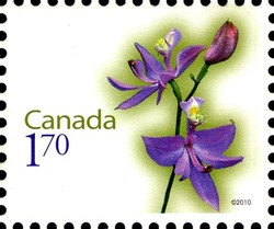 Rose Pogonia Canada Postage Stamp | Flowers
