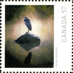 Ardea herodias (Great Blue Heron) Canada Postage Stamp | Canadian Geographic's Wildlife Photography of the Year