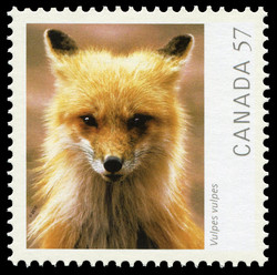 Vulpes vulpes (Red Fox) Canada Postage Stamp