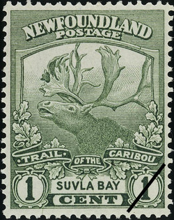 Trail of the Caribou, Suvla Bay Newfoundland Postage Stamp | Caribou