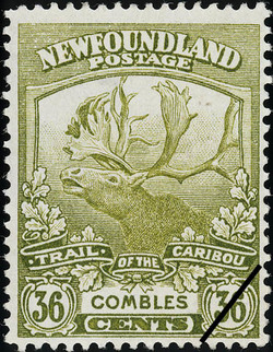 Trail of the Caribou, Combles Newfoundland Postage Stamp | Caribou