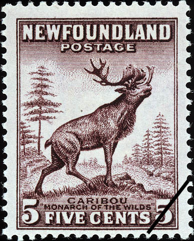 "Caribou, ""Monarch of the Wilds"" Newfoundland Postage Stamp"
