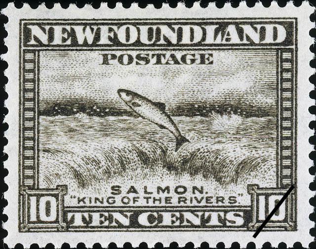 "Salmon, ""King of the Rivers"" Newfoundland Postage Stamp"