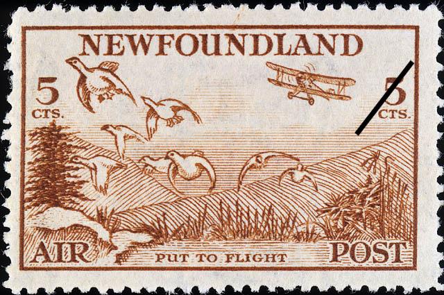 Put to Flight, Air Newfoundland Postage Stamp | Air Post