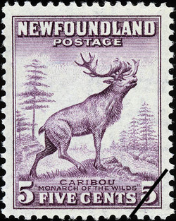"""Caribou, """"Monarch of the Wilds"""" Newfoundland Postage Stamp"""