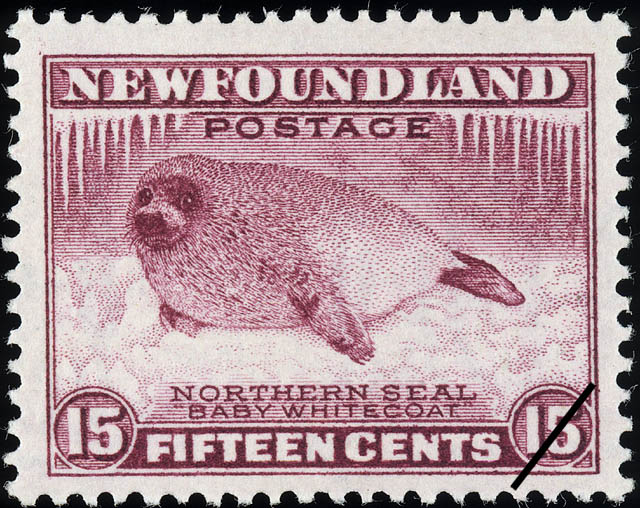 "Northern Seal, ""Baby Whitecoat"" Newfoundland Postage Stamp"
