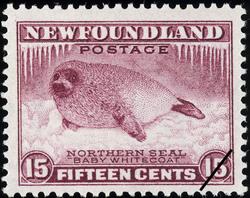 "Northern Seal, ""Baby Whitecoat"" Newfoundland Postage Stamp"