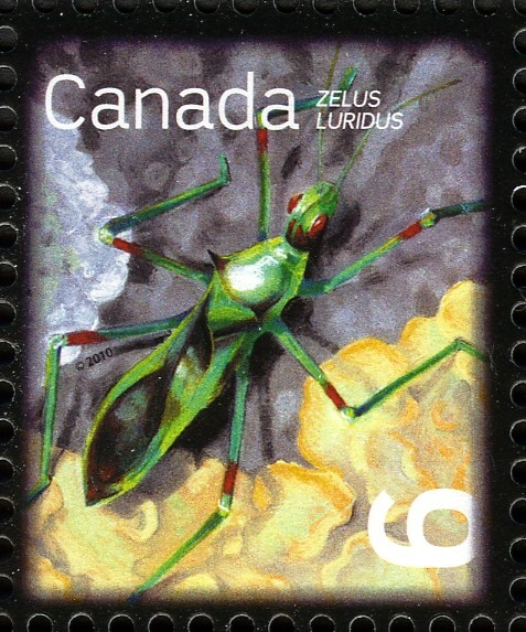Pale Green Assassin Bug (Zelus luridus) Canada Postage Stamp | Beneficial Insects