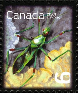 Pale Green Assassin Bug (Zelus luridus) Canada Postage Stamp