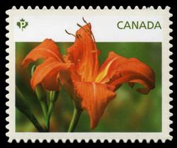 Orange Daylily Canada Postage Stamp | Daylilies