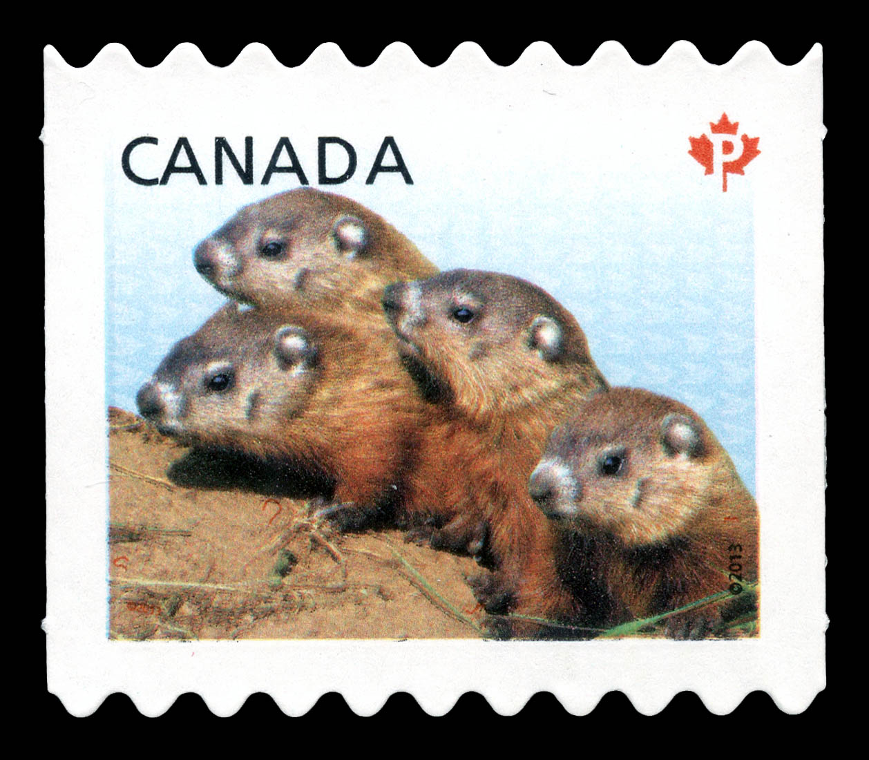 Woodchucks - Baby Wildlife Canada Postage Stamp | Baby Wildlife - Definitives