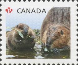 Beavers - Baby Wildlife Canada Postage Stamp