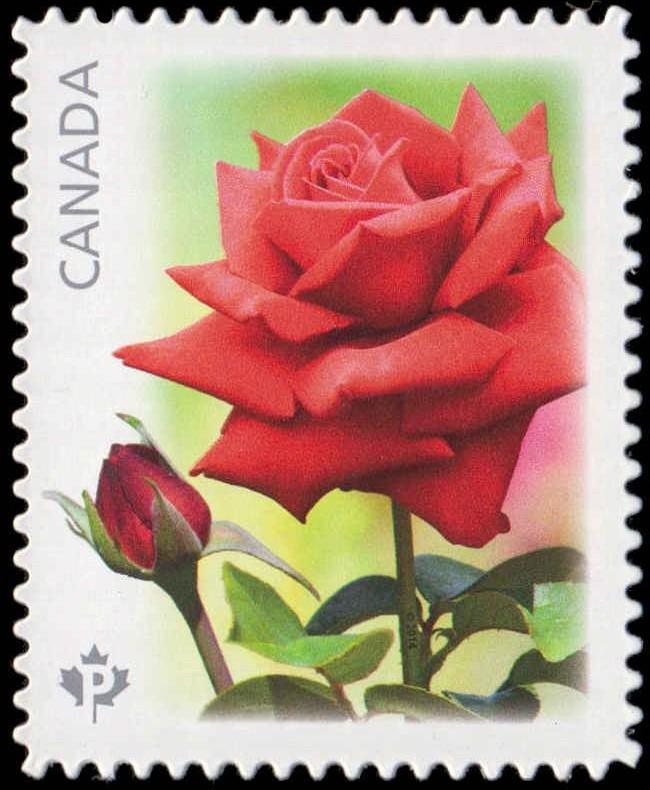 Konrad Henkel - Red Rose Canada Postage Stamp
