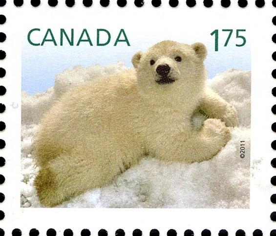 Polar Bear Cub - Baby Wildlife Canada Postage Stamp | Baby Wildlife - Definitives