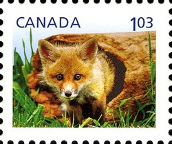 Red Fox Cub - Baby Wildlife Canada Postage Stamp | Baby Wildlife - Definitives