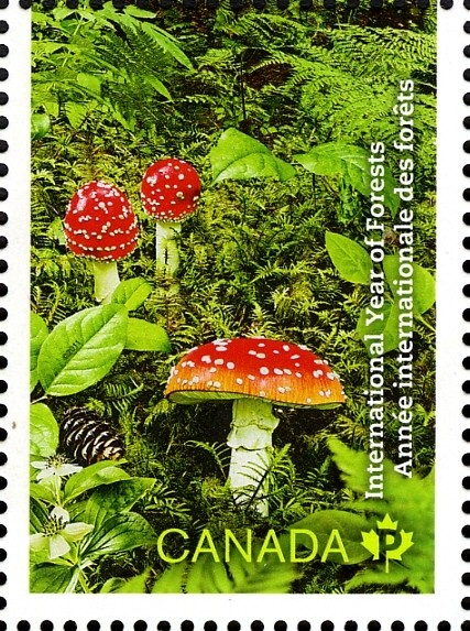 International Year of Forests Canada Postage Stamp