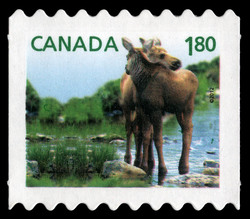Moose - Baby Wildlife  Canada Postage Stamp | Baby Wildlife - Definitives