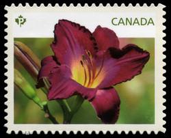Purple Daylily Canada Postage Stamp | Daylilies