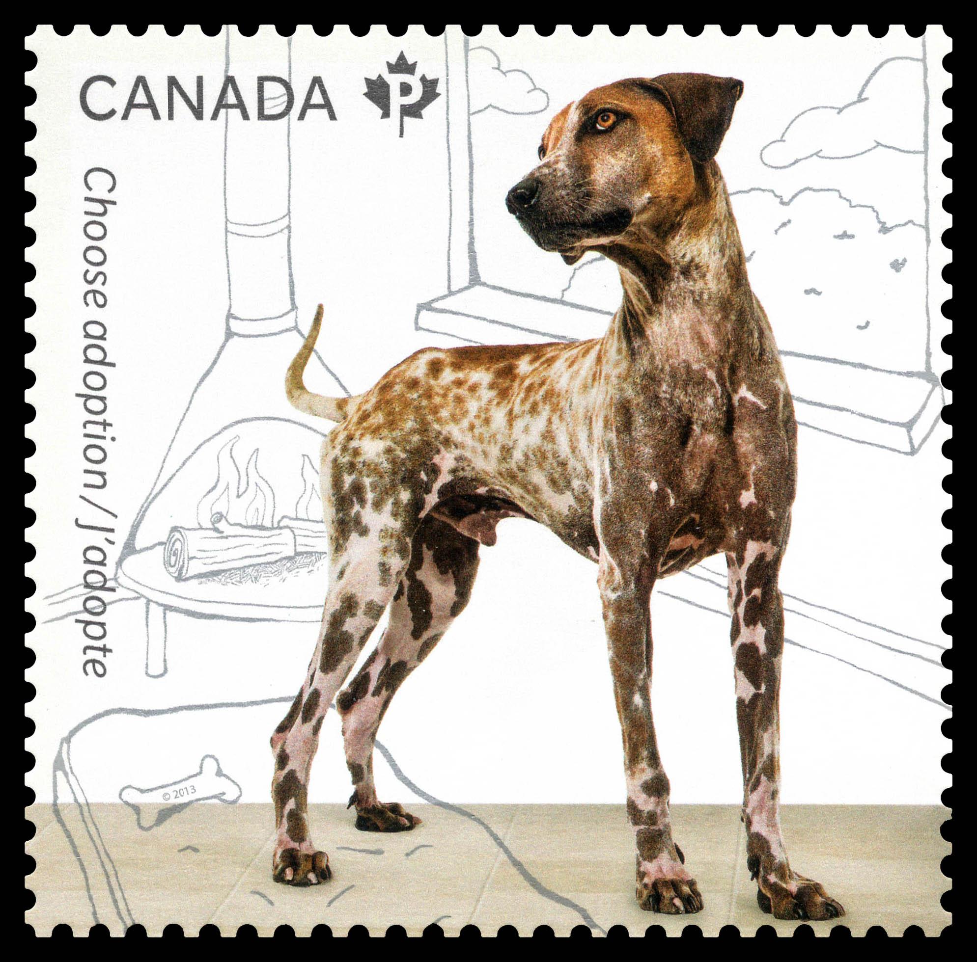 Adopt a Dog Canada Postage Stamp   Adopt a Pet