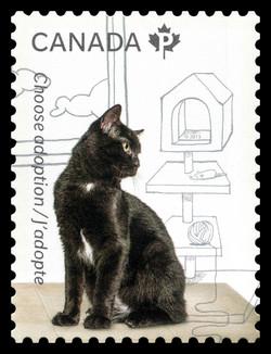 Adopt a Cat Canada Postage Stamp | Adopt a Pet