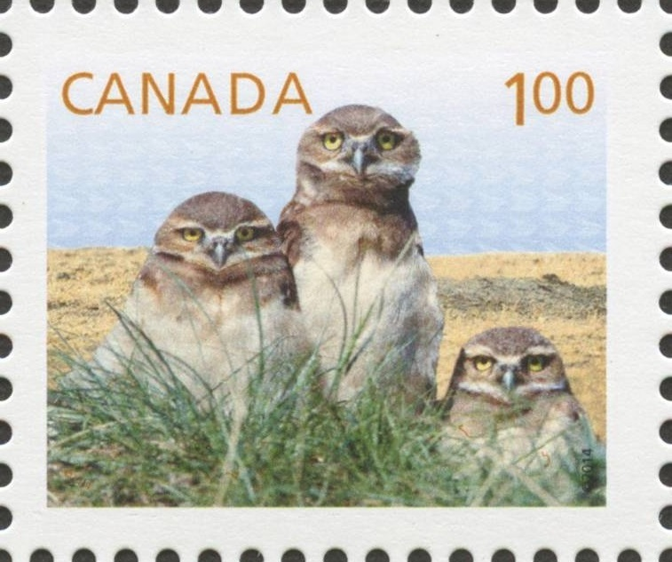 Burrowing Owls - Baby Wildlife Canada Postage Stamp