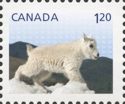 Mountain Goat - Baby Wildlife Canada Postage Stamp | Baby Wildlife - Definitives