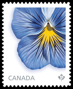 Delta Premium Pure Light Blue Pansy Canada Postage Stamp | Pansies