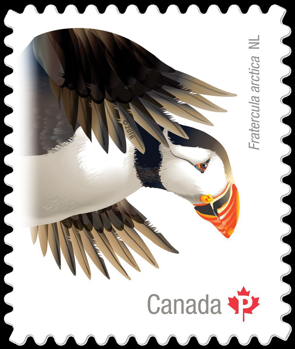 Atlantic Puffin (Fratercula Arctica) Newfoundland and Labrador Canada Postage Stamp | Birds of Canada