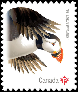 Atlantic Puffin (Fratercula Arctica) Newfoundland and Labrador Canada Postage Stamp | Birds of Canada