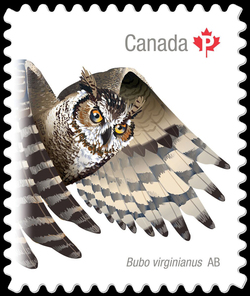 Great Horned Owl (Bubo Virginianus) Alberta Canada Postage Stamp | Birds of Canada