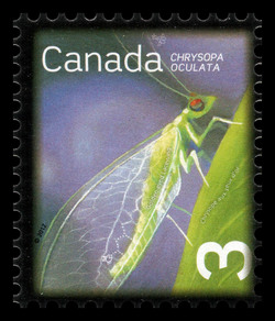 Golden-Eyed Lacewing - Chrysopa Oculata Canada Postage Stamp | Beneficial Insects