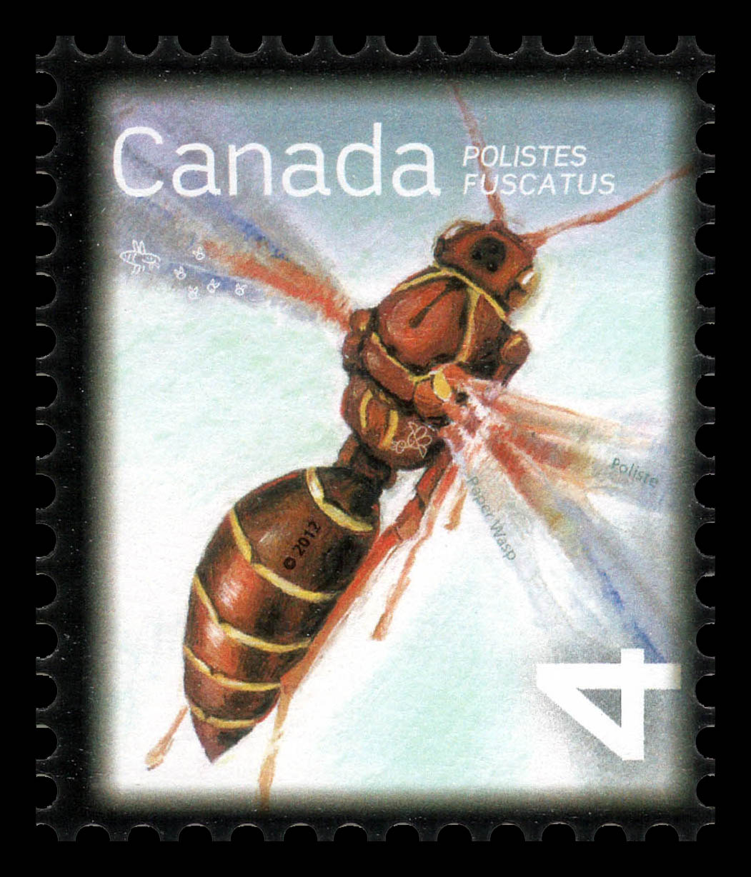 Paper Wasp - Polistes Fuscatus Canada Postage Stamp | Beneficial Insects