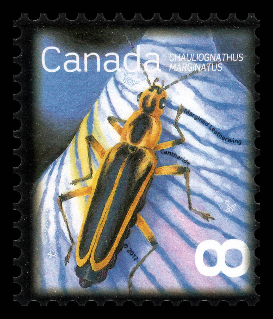 Margined Leatherwing - Chauliognathus Marginatus Canada Postage Stamp | Beneficial Insects