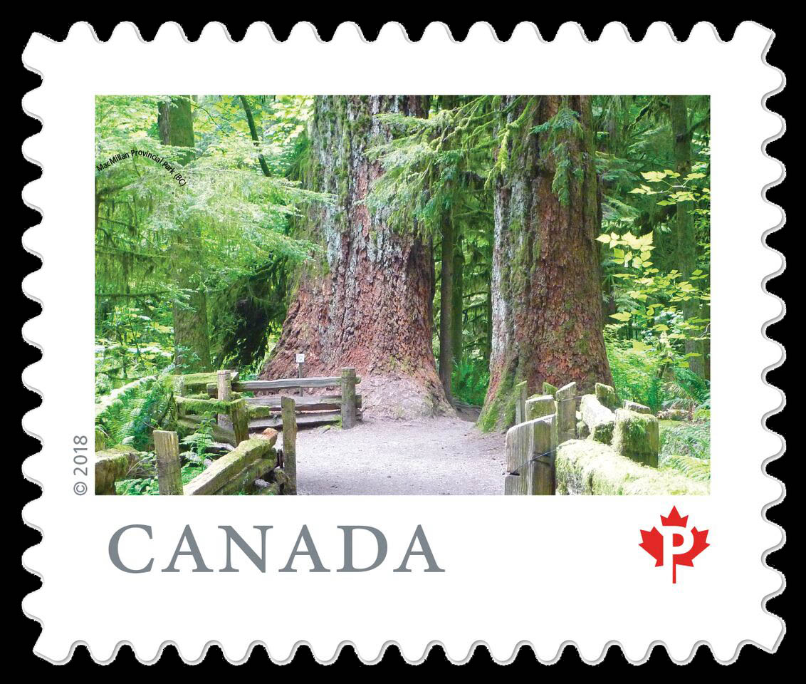 MacMillan Provincial Park (BC) Canada Postage Stamp | From Far and Wide
