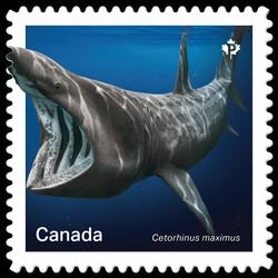 Basking Shark- Cetorhinus Maximus Canada Postage Stamp | Sharks