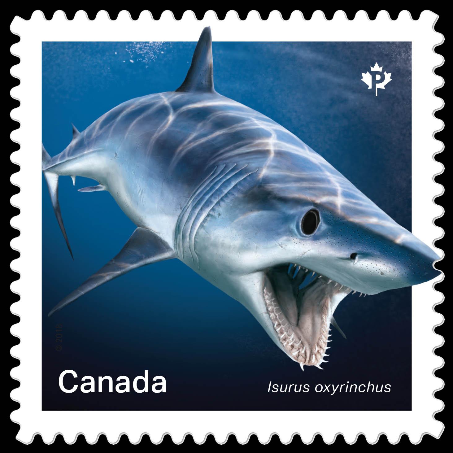 Shortfin MakoShark- Isurus Oxyrinchus Canada Postage Stamp   Sharks
