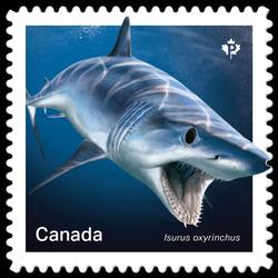 Shortfin MakoShark- Isurus Oxyrinchus Canada Postage Stamp | Sharks