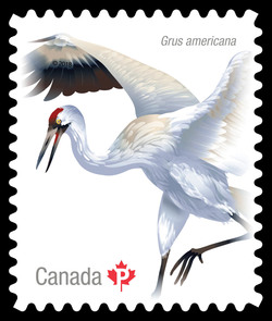 Whooping Crane Canada Postage Stamp | Birds of Canada