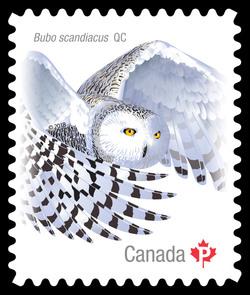 Snowy Owl Canada Postage Stamp | Birds of Canada