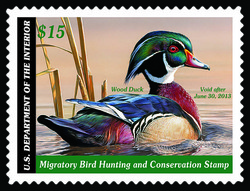 Federal Duck Stamp US Postage Stamp Series