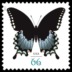 Spicebush Swallowtail Butterfly United States Postage Stamp